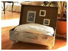 Gut Sleeping Place For Cats   DIY. Love The Hanging Photos For The Kitties View: