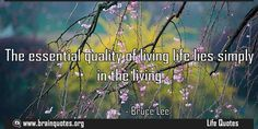 The essential quality of living life Quote  The essential quality of living life lies simply in the living  For more #brainquotes http://www.braintrainingtools.org  The post The essential quality of living life Quote appeared first on Brain Quotes.  http://www.braintrainingtools.org/skills/the-essential-quality-of-living-life-quote/