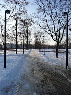 Park Znicza na Grochowie