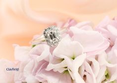 Stunning emerald cut engagement ring made by Clayfield Jewellery at our in store jewellery workshop in Nundah Village, North Brisbane. Jewellery Workshop, Fine Jewelry, Jewelry Making, Emerald Cut, Brisbane, Diamond Engagement Rings, Wedding Rings, Jewels, Store