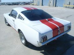 Large inventory of old Mustangs for sale - GT's, Fastbacks, Convertibles. Sn95 Mustang, Ford Mustang Fastback, Project Cars For Sale, 1967 Shelby Gt500, Mustang For Sale, Custom Muscle Cars, Car Makes, Mustangs, Tea Length
