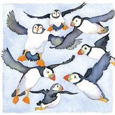 Emma Ball Original Watercolours Greetings Cards and Limited Edition Prints, Home page Watercolor Bird, Watercolor Texture, Watercolor Paintings, Love Birds Painting, Puffins Bird, Animal Magic, Arctic Animals, Cute Illustration, Animal Paintings
