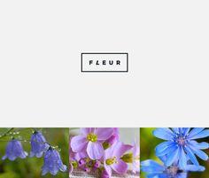 FLEUR on Behance