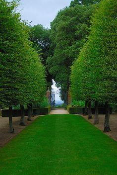 Lawnmower Man at Hidcote Manor Garden by antonychammond, via Flickr