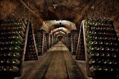 Aquaponics For Beginners Monogram Wine Glasses, Custom Wine Glasses, Pinot Noir, Cave, Old Pub, Vides, Wine Collection, Vitis Vinifera, Sparkling Wine