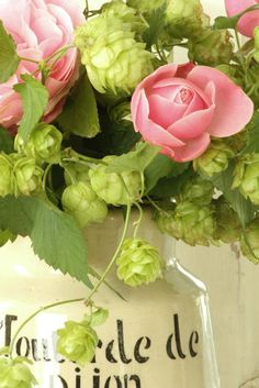 roses and hops!