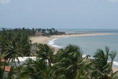 O cenário encantador oferece ainda coqueirais virgens, florestas de mata atlântica e manguezais