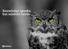 knowledge wisdom