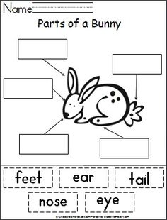 FREE---Students cut out words and paste them next to the part of a bunny that they name.  This is a wonderful free spring or Easter activity and helps with reading and fine motor skills required for cutting and pasting.