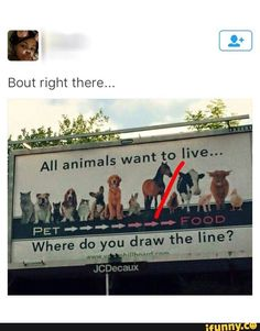 where, to, draw, the, line