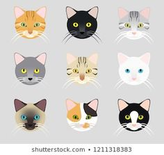 Set Cute Cat Face Different Color Stock Vector (Royalty Free) 1350242702 Dog Face Drawing, Funny Face Drawings, Funny Cat Faces, Cute Cat Face, Cute Cat Drawing, Cute Drawings, Gato Calico, Toddler Arts And Crafts, Clay Cats