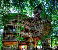 795. See the Minister's Treehouse, Tennessee