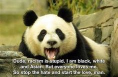 Wise words from a panda bear.→ For more, please visit me at: www.facebook.com/jolly.ollie.77