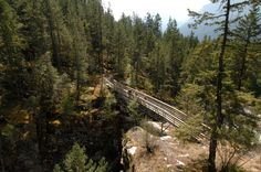 Abandoned railway lines have been changed to bike/walking paths. Columbia & Western Rail Trail: Castlegar - Christina Lake. Photo courtesy of the City of Castlegar.