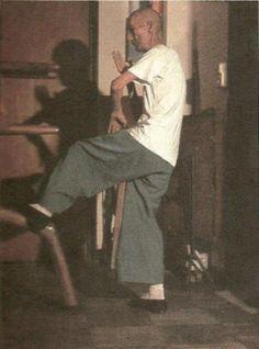 SWK - Ip Man - Performing Mok Yan Chong Movement 49 (Colour)