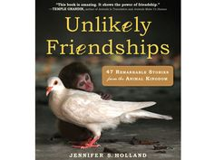 Written by National Geographic magazine writer Jennifer Holland, Unlikely Friendships: 47 Remarkable Stories from the Animal Kingdom documents one heartwarming tale after another of animals who, with nothing else in common, bond in the most unexpected ways. Here are a few of our favorite photos from the book.