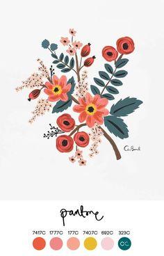 Color palette inspired by Anna Bond's work (Rifle Paper Company) Illustration Blume, Photo Illustration, Posca Art, Guache, Colour Schemes, Color Palettes, Design Blog, Floral Illustrations, Painting Illustrations