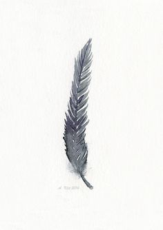 Feather art work - from original watercolor painting - Bird feather art print - hand painted watercolor - Modern single feather artwork