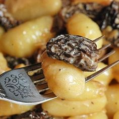 Gnocchi with a Creamy Morel Mushrooms Sauce
