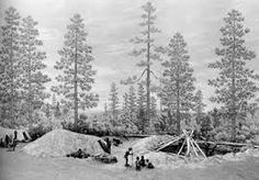 Image result for first nations shelter