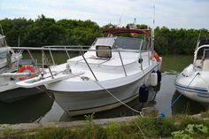 """#Nattante"""" #Robalo 2660 """", #precisando che la barca è in #ottimo stato di #manutenzione come da foto, in #asciutta da ... #annunci #nautica #barche #ilnavigatore"""