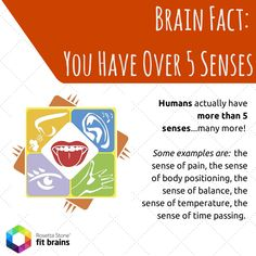 #Fact: Did you know we have more than 5 senses? Many more in fact! Learn more about your #brain: http://bit.ly/ZU1Ia0 #health #interesting