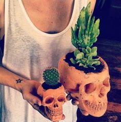 Oh lookie here.  I know just the right two people who would be ideal for this DIY!  I wonder if his big head and her brainless head are available? #cactusindoor #cactusflowerdiy