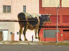 #Streetart #Jacksonville #Florida By;  #Julien_de_Casabianca