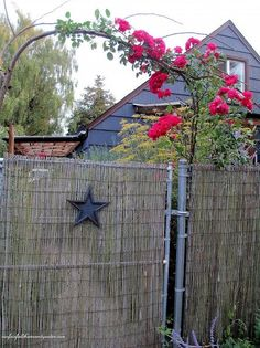diy beautify a chain link fence with bamboo, diy, fences, outdoor living, Bamboo screening creates privacy for this cottage garden