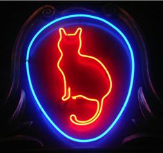 Body language cat running sideways,cat tail curled over back cat tail signs,cats ears forward cats wagging their tail. Neon Light Art, Neon Light Signs, Led Neon Signs, Crazy Cat Lady, Crazy Cats, Neko, Neon Gas, Cat City, Light Images