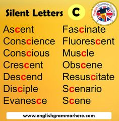 English Grammar Tenses, English Phonics, Teaching English Grammar, English Sentences, English Writing Skills, English Language Learning, English Phrases, Learn English Words, English Lessons