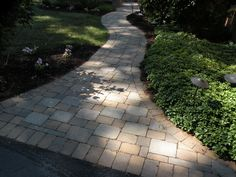 Simple, but serene stone paver walkway complimented with beautiful pachysandra…