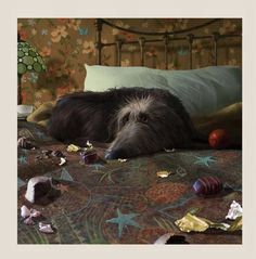 Breakfast In Bed by Stephen Hanson-The Acorn Gallery