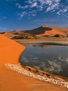 Desert Oasis In Libya