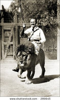 """Gay Riding Pluto, Gay's Lion Farm, El Monte, California. Gay's Lion farm opened in 1919 and closed in At one time the """"farm"""" housed the MGM lion and several lions that were used in Tarzan movies. Vintage Photographs, Vintage Photos, Gotham, Strange Beasts, Lion Tamer, Weird Vintage, Yorky, Vintage Circus, Vintage Carnival"""