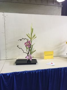 2015 Ohio State fair showing water second-place designed by Abbie Riley