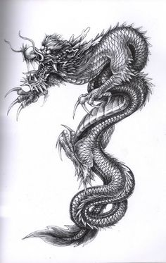 China Dragon - I want this talent!