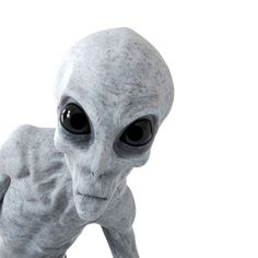 Alien Abduction: Is it happening to you? Les Aliens, Aliens And Ufos, Alien Creatures, Fantasy Creatures, Paul The Alien, Alien Photos, Strange Noises, Alien Drawings, Alien Character