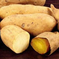 Shop a large selection of sweet potato slips for your home garden. Centennial, Beauregard, White Yam, Georgia Jets and more. Sweet Potato Slips, Yam Or Sweet Potato, White Yam, Growing Mushrooms At Home, Purple Yam, Nutrition Store, Food Nutrition, Nutrition Guide, Grow Your Own Food