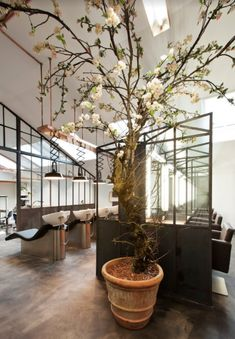 Discover Mogeen, Amsterdam, our salon design of the month where owner Hester Wernert-Rijn, Wella Professionals Global Creative Artist talks about her salon.