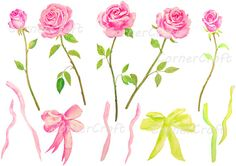 hand painted watercolour pink roses with stem tea by CornerCroft