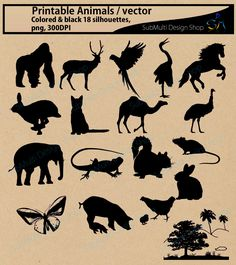 Animals / SVG / High Quality / colored and black animals / digital image…
