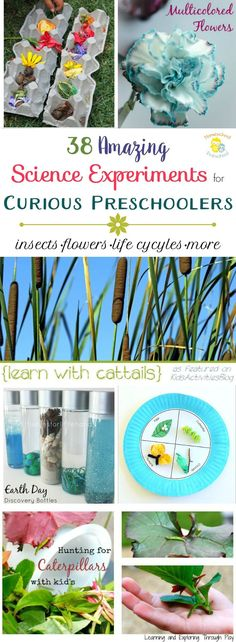 Take advantage of all the new that spring has to offer, and try as many of these preschool science experiments as you can!   homeschoolpreschool.net via @homeschlprek