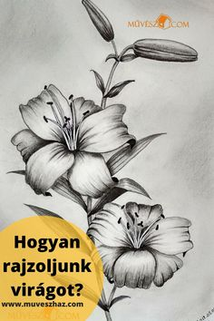 Hogyan rajzoljunk virágot? Népszerű téma a rajzolásban a virág, hoztunk Neked ehhez most néhány Trükköt!!