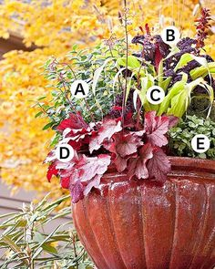 Fall Container Garden Ideas http://crwd.fr/2hS4BGZ @BHG Love #fall container planting! #Gardening #DIY #Since1922🌳