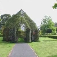 A man in New Zealand has dedicated four years of his life to carefully training tree branches so he could construct an enchanting church made completely from living trees. Natural Architecture, Old Churches, Chapelle, Topiary, Tree Of Life, Screen Shot, New Zealand, Backyard, Outdoor Structures