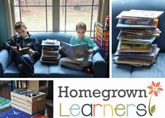 5 Tips for Using the Library Successfully — Homegrown Learners