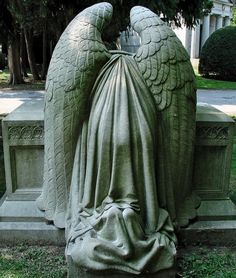 Bode's angel…    Woodlawn Cemetery  Bronx, NY