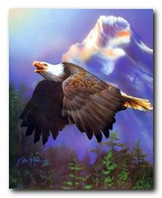 Transform your habitat from boring dull walls into wow in the blink of an eye by hanging this bald eagle flying art print poster. It goes well with all decor style and also will be a great addition for your beautiful sweet home. Bald Eagle is a symbol of American strength and freedom. Hurry up and order this poster for its excellent quality with high degree of color accuracy.