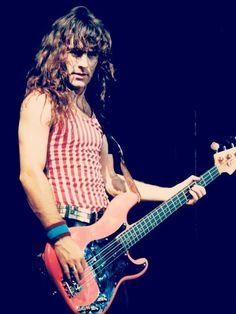Steve Harris / Iron Maiden- www.vinuesavallasycercados.com